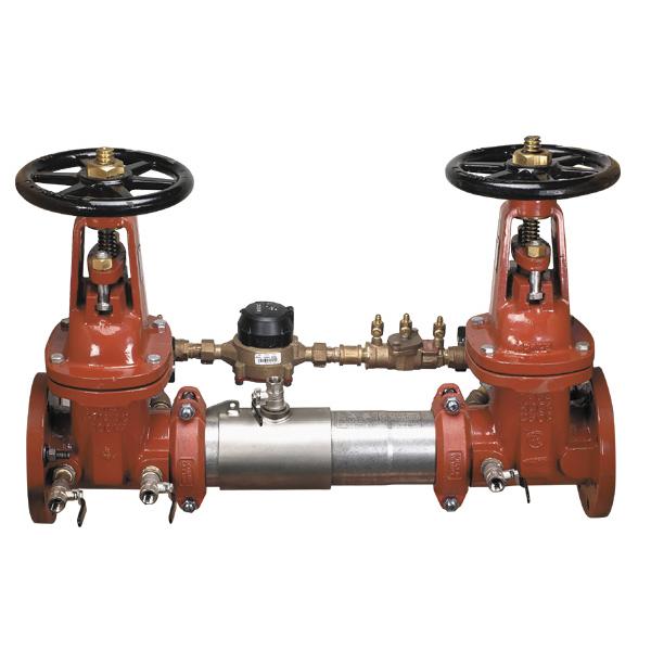 detector check valve